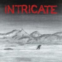 Intricate - LP